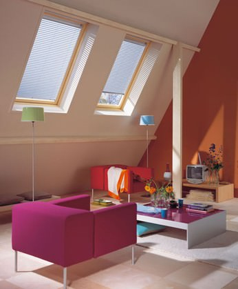 Velux and Skylights